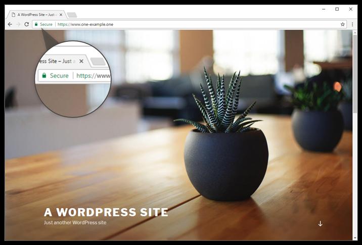 Your WordPress website now shows in https