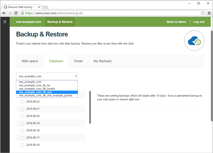 Select the database you want to restore a backup for