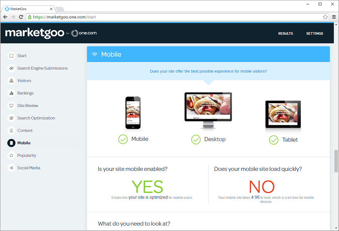 MarketGoo let's you know if your site also looks good on a mobile